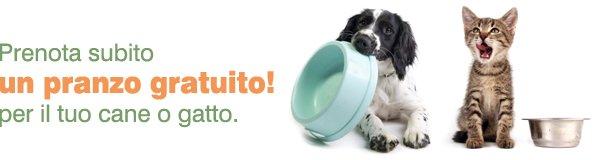 Pasto gratuito per cane e gatto