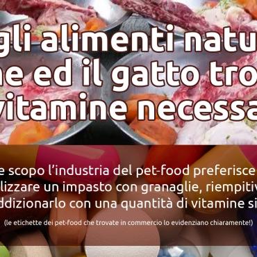 Vitamine sintetiche
